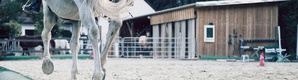 La Minotte - Tourisme - Centres équestres